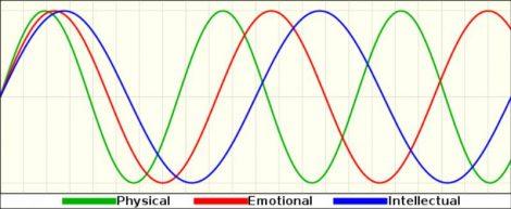 Calcolo dei Bioritmi
